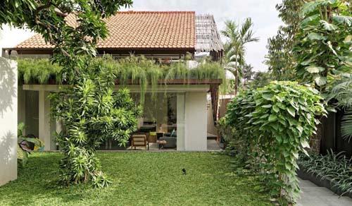 Konsep Rumah Tropis yang Cocok Diterapkan Di Indonesia